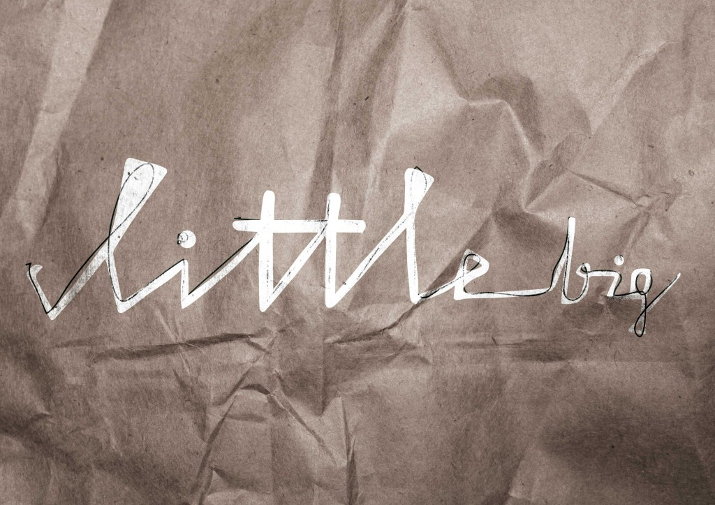 littlebig_paper